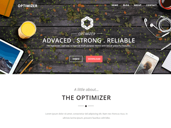 Optimizer - 50+ Best Free Responsive WordPress Themes 2019