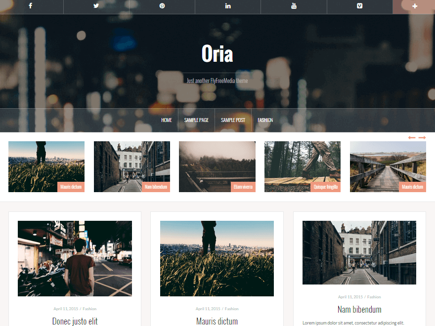 Oria - 50+ Best Free Responsive WordPress Themes 2019