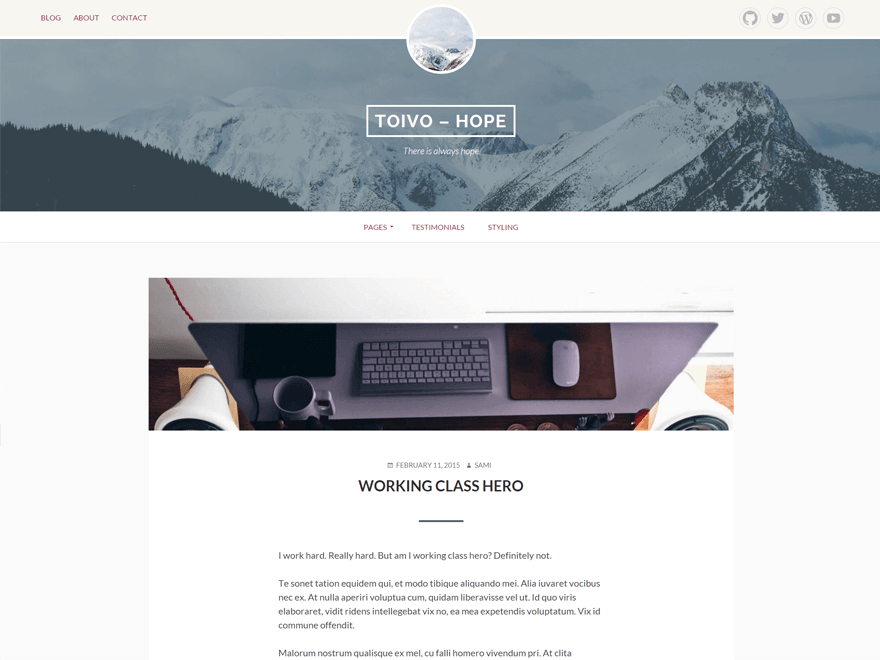 Toivo Lite - 50+ Best Free Responsive WordPress Themes 2019