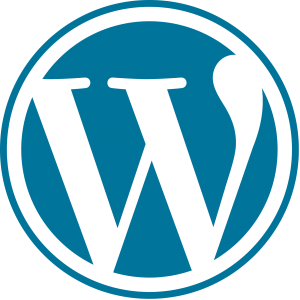 WordPress2 300x300 - A complete guide to WordPress for beginners