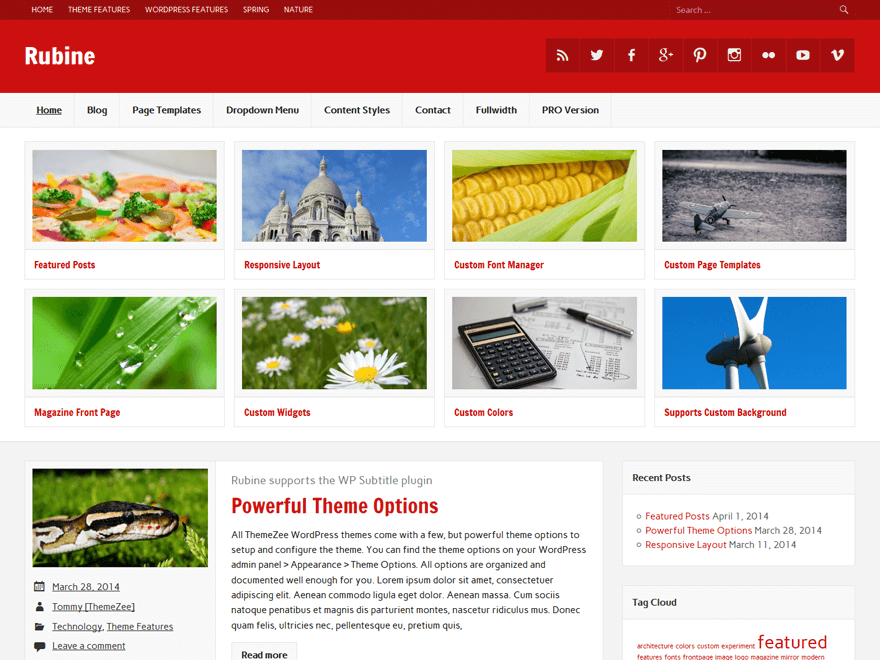 rubine lite - 25+ Best Free Responsive Magazine WordPress Themes 2020