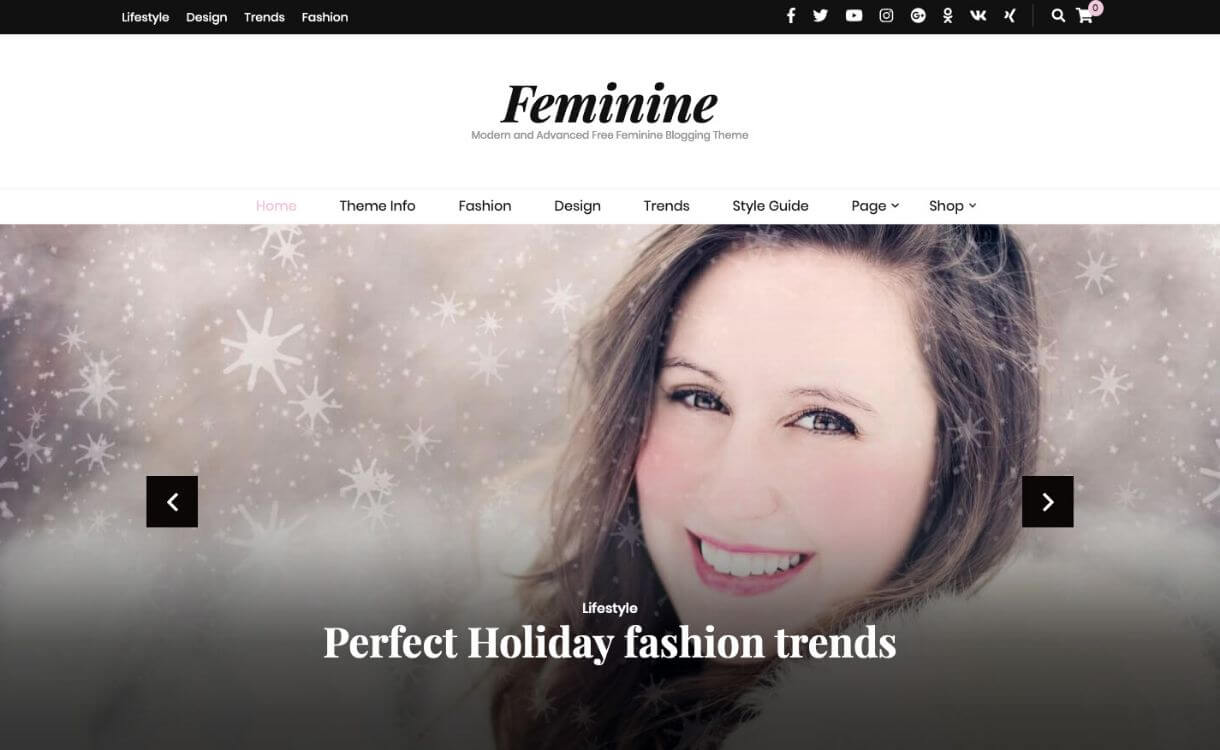 Blossom Feminine - Free Responsive WordPress Theme