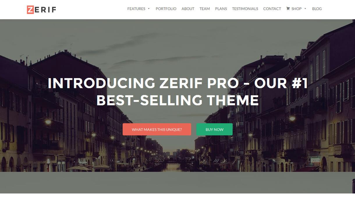 Zerif Pro - 30+ Best Premium WordPress Business/Agency Themes for 2019