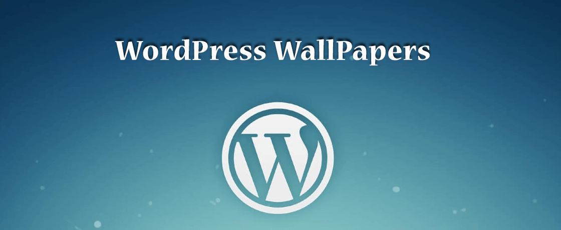 WordPress Wallpaper
