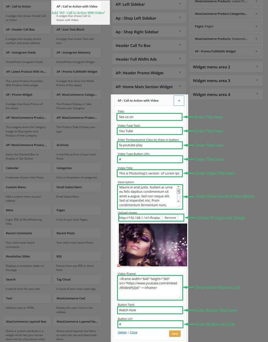 calltoactionvideo settings - AccessPress Store Pro: Perfect WooCommerce WP Theme