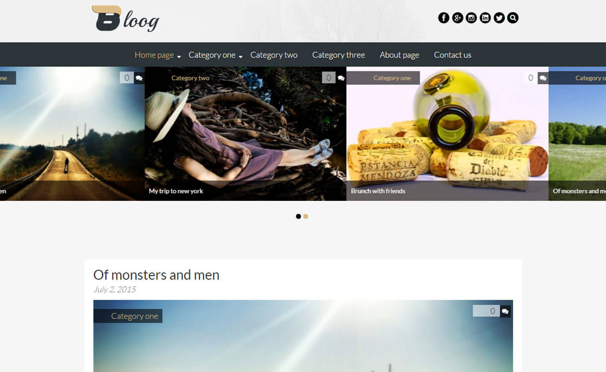 Bloog Lite 1 - 30+ Best Free WordPress Personal/Professional Blog Themes for 2019