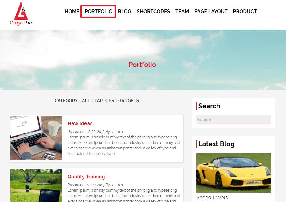 portfolio layout gaga pro - Everything you need to know about WordPress Multisite