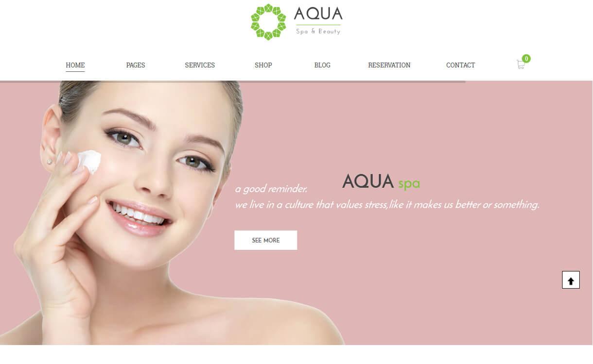 aqua-premium-WordPress-theme
