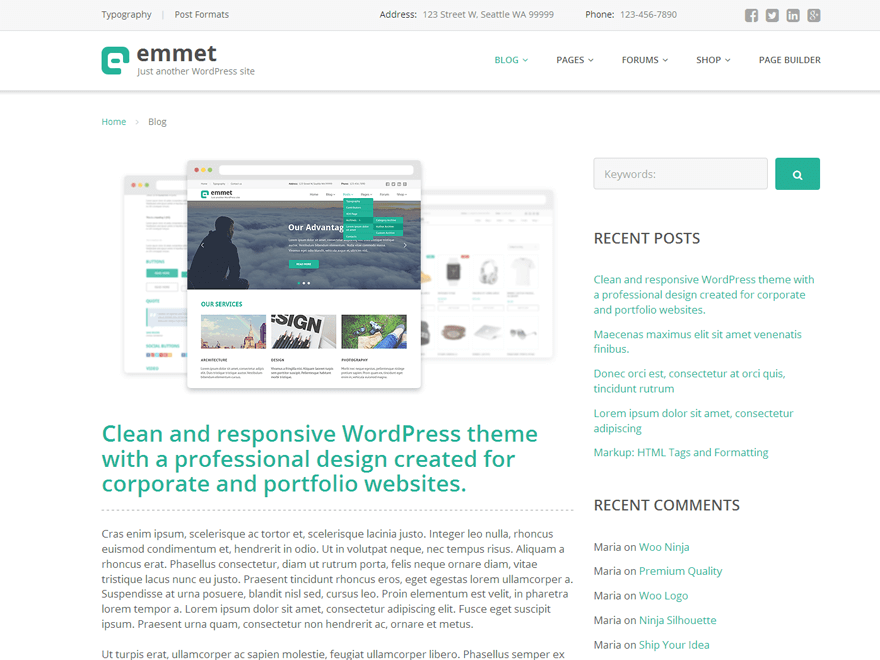 emmet lite - 15+ Best Free WordPress Portfolio Themes 2019