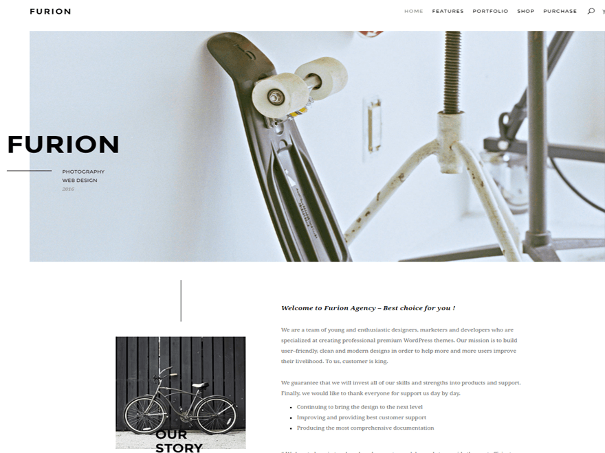 Furion - Premium Portfolio WordPress Theme