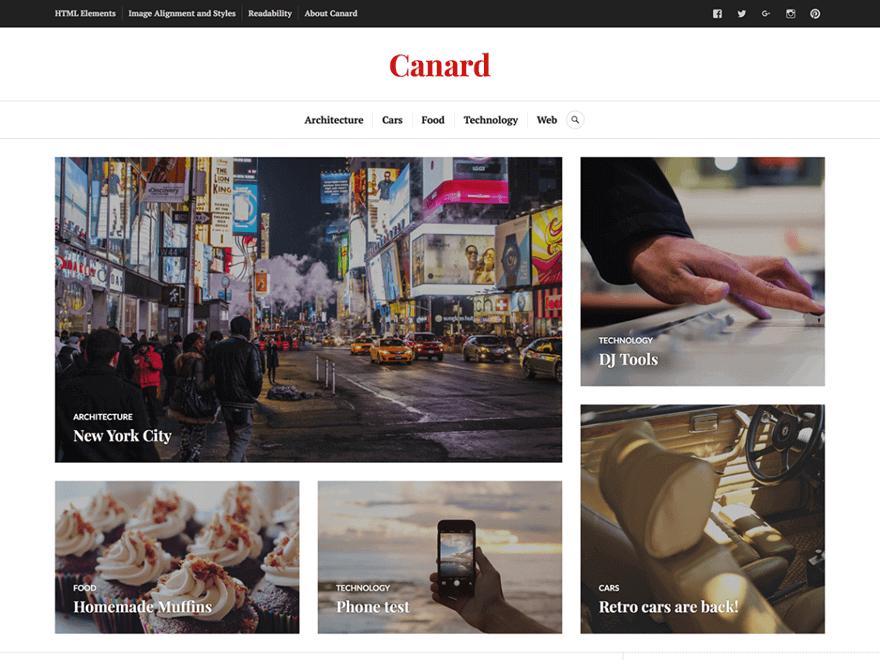 Canard - 25+ Best Free Photography WordPress Themes & Templates 2020