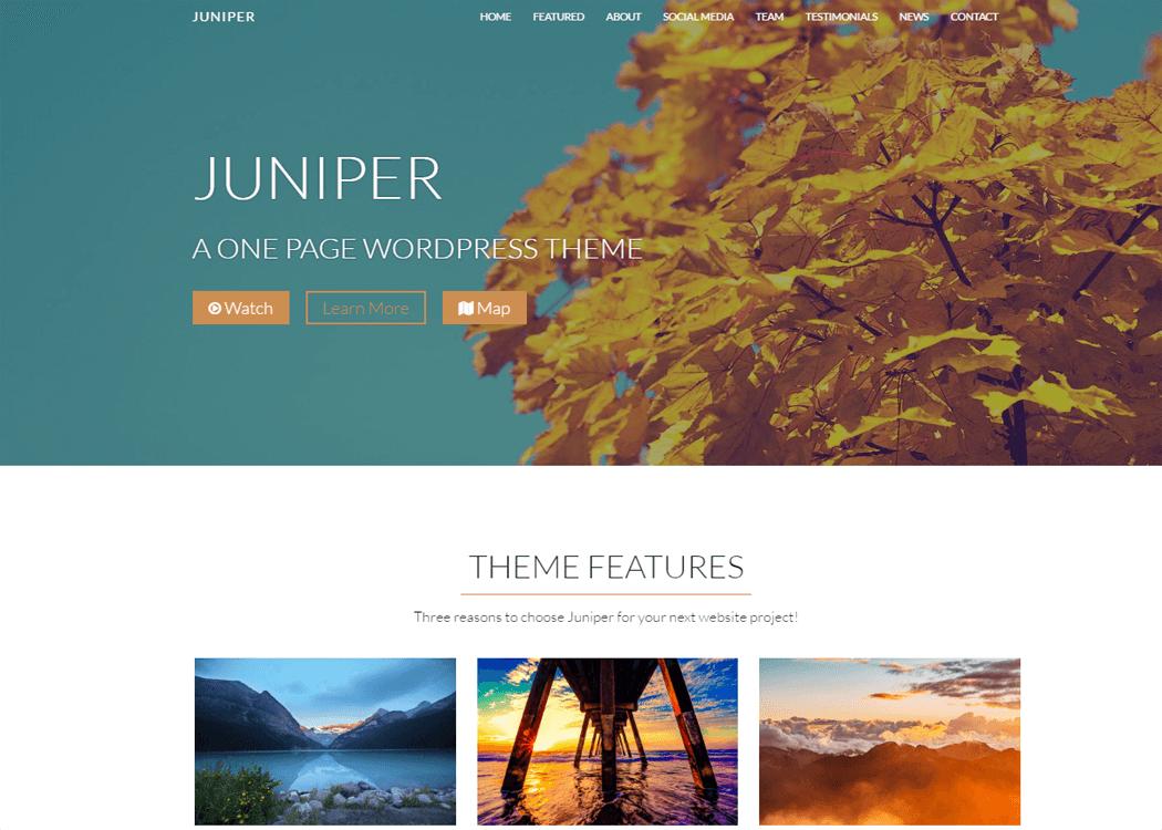 Juniper WordPress One page Theme - 35+ Best Premium WordPress Themes and Templates 2020[UPDATED]