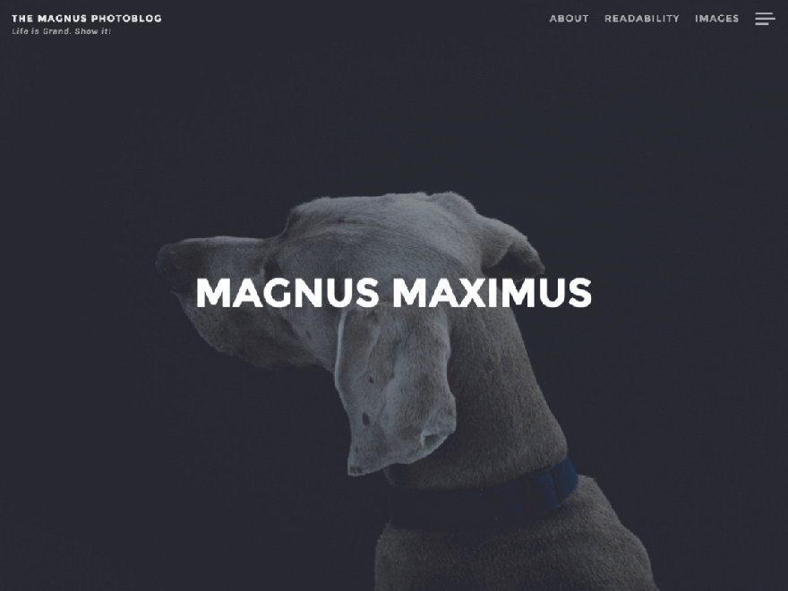 Magnus - 23+ Best Free Photography WordPress Themes & Templates 2019