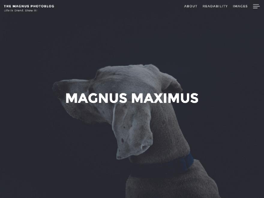 Magnus - 25+ Best Free Photography WordPress Themes & Templates 2020
