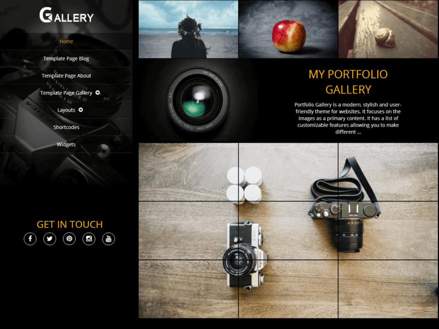 Portfolio Gallery - 25+ Best Free Photography WordPress Themes & Templates 2020