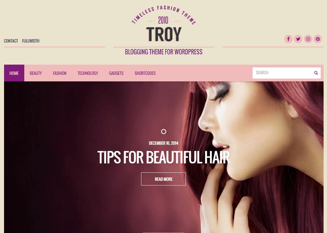 Troy WordPress Blog Theme - 35+ Best Premium WordPress Themes and Templates 2019 [UPDATED]