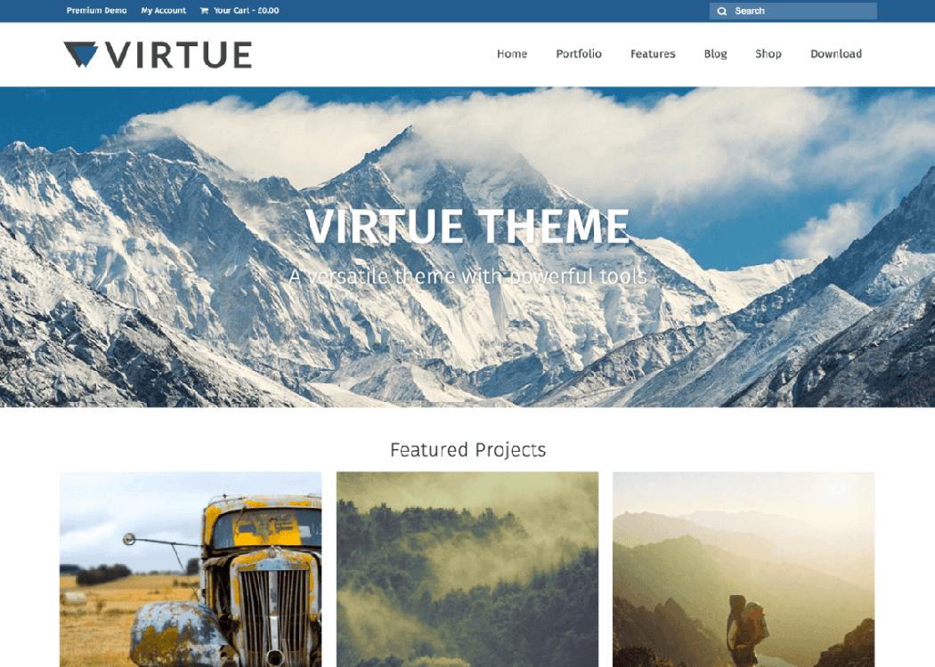 Virtue WordPress Multipurpose Theme - 35+ Best Premium WordPress Themes and Templates 2020[UPDATED]