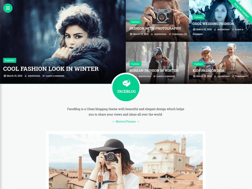 faceblog - 25+ Best Free Photography WordPress Themes & Templates 2020