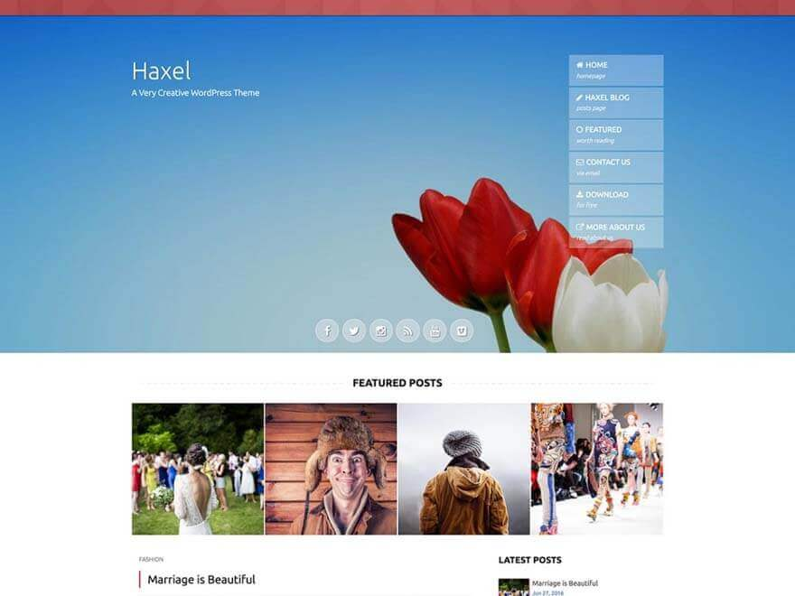 haxel - 25+ Best Free Photography WordPress Themes & Templates 2020