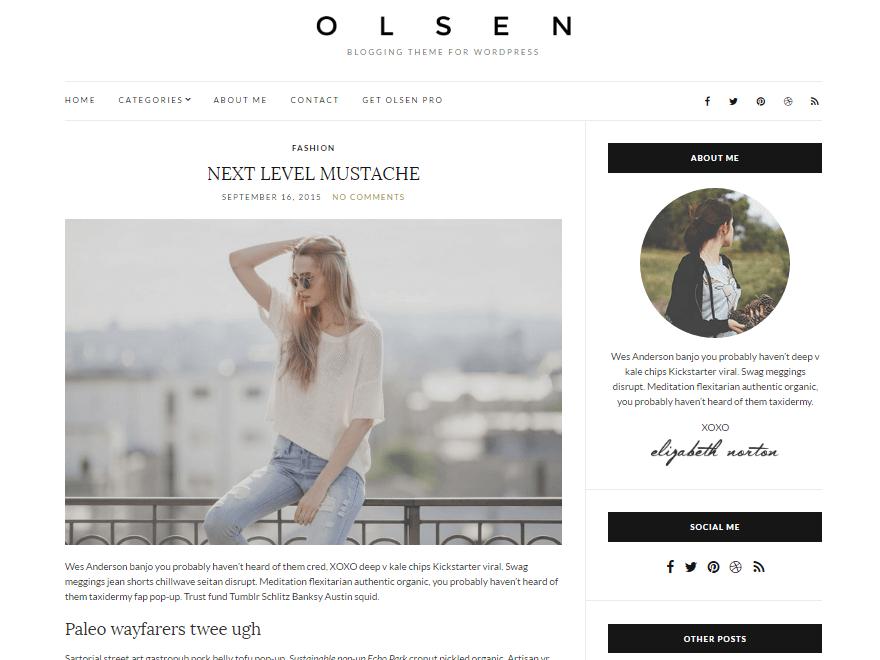 olsen light - 23+ Best Free Photography WordPress Themes & Templates 2019
