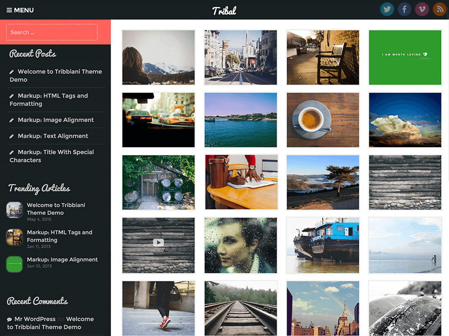tribal - 25+ Best Free Photography WordPress Themes & Templates 2020