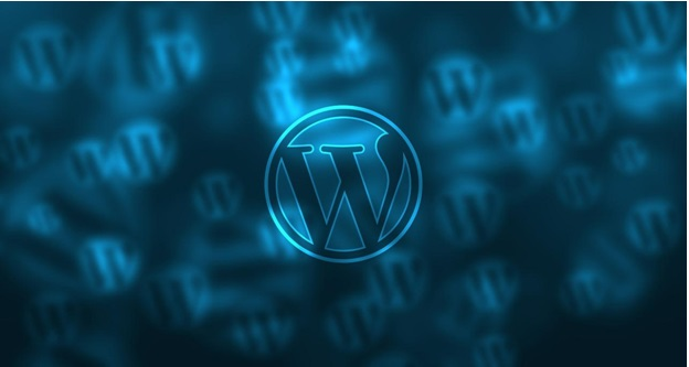 wordpress - Future of WordPress: Will It Continue To Be The Most Popular CMS?