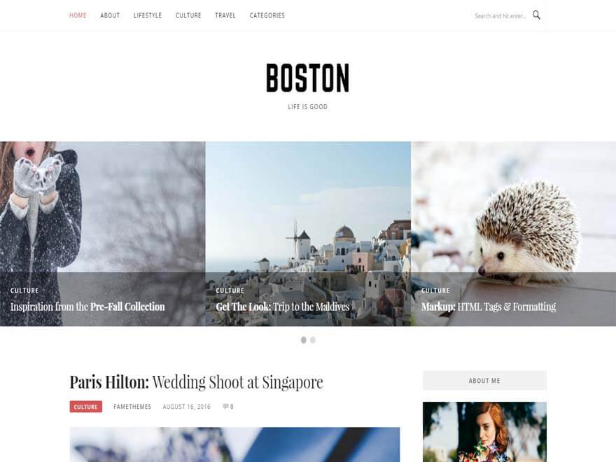 Boston - Best free WordPress Theme September 2016