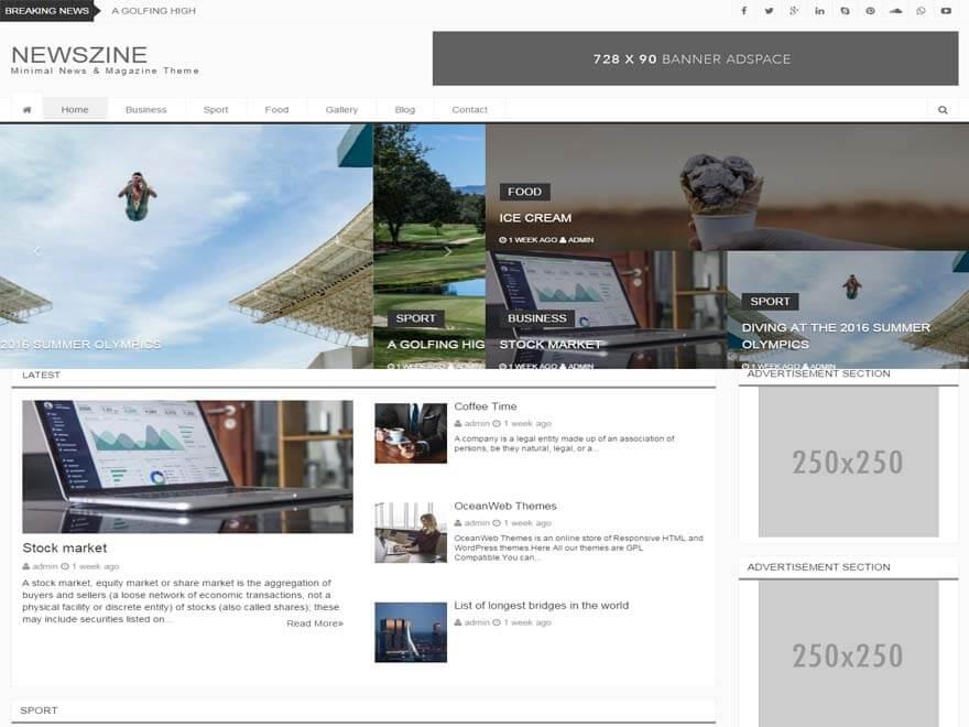 NewsZine - 11+ Best Free Responsive WordPress Themes September 2016