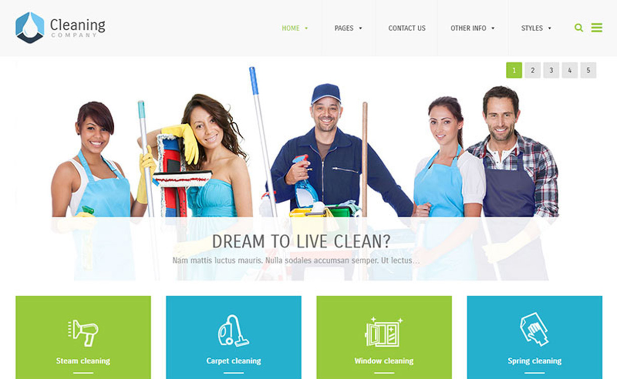 PE Cleaning Company: Premium Multipurpose WordPress Theme