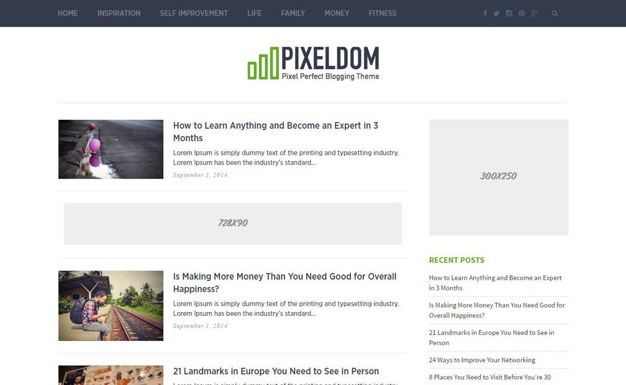 Pixeldom : Premium WordPress Blog Theme
