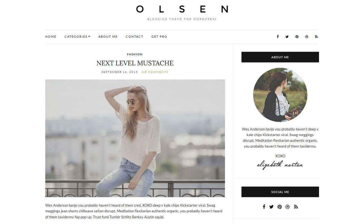 Olsen Light - 30+ Best Free WordPress Personal/Professional Blog Themes for 2019