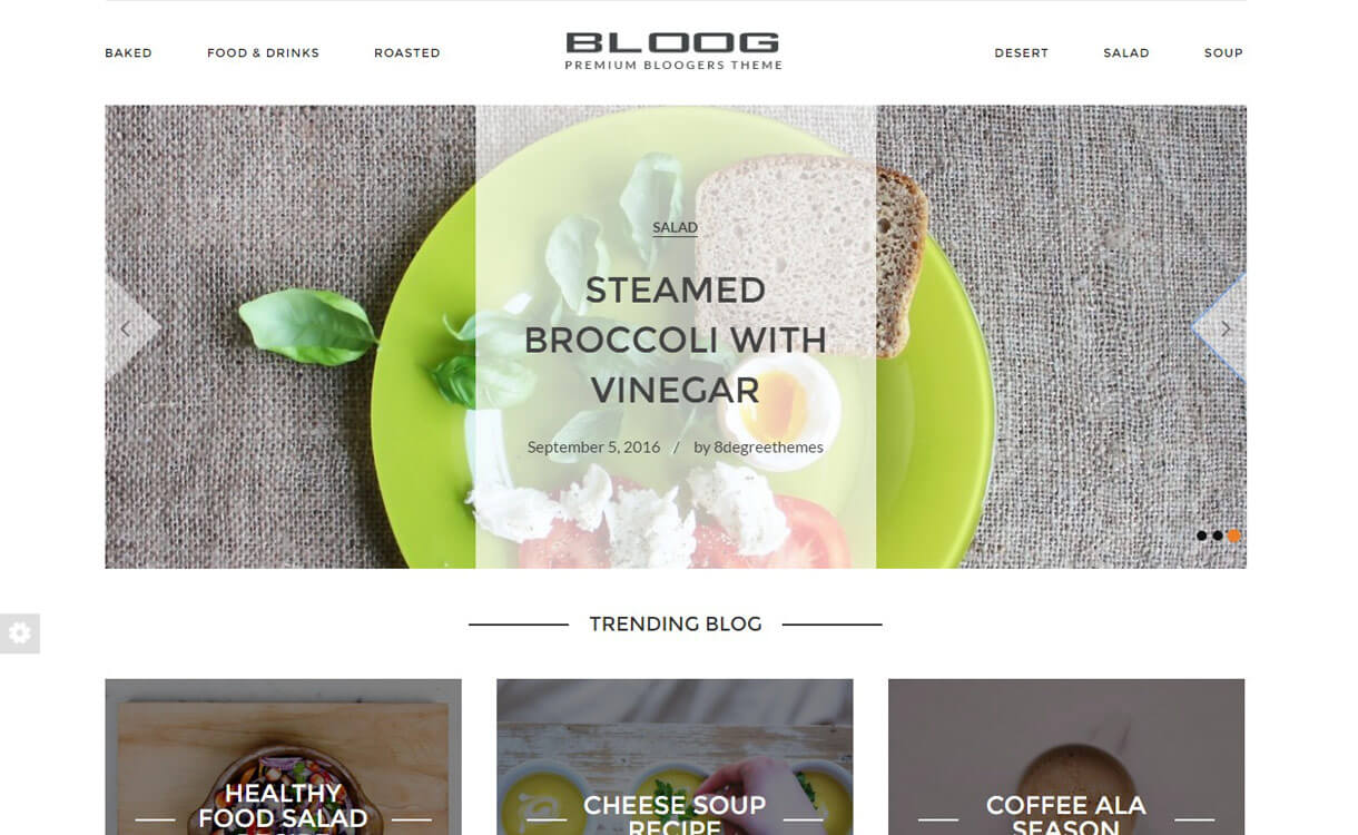 bloog-pro-premium-wordpress