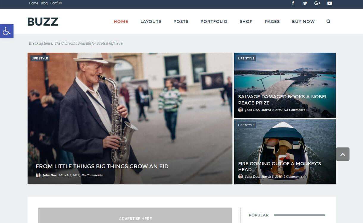 buzz-modern-premium-WordPress-theme