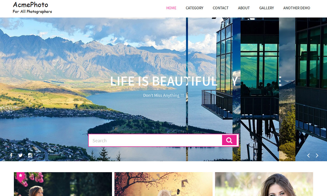 AcmePhoto - 30+ Best Free WordPress Photography Themes for 2019