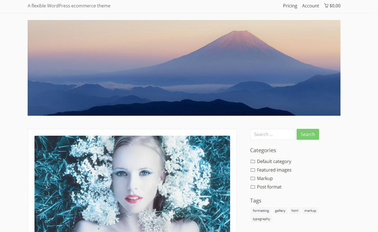 Basic Shop- Free Responsive Blog Theme