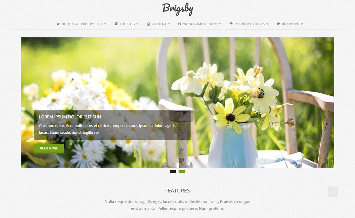 Brigsby - Free Modern WordPress Theme
