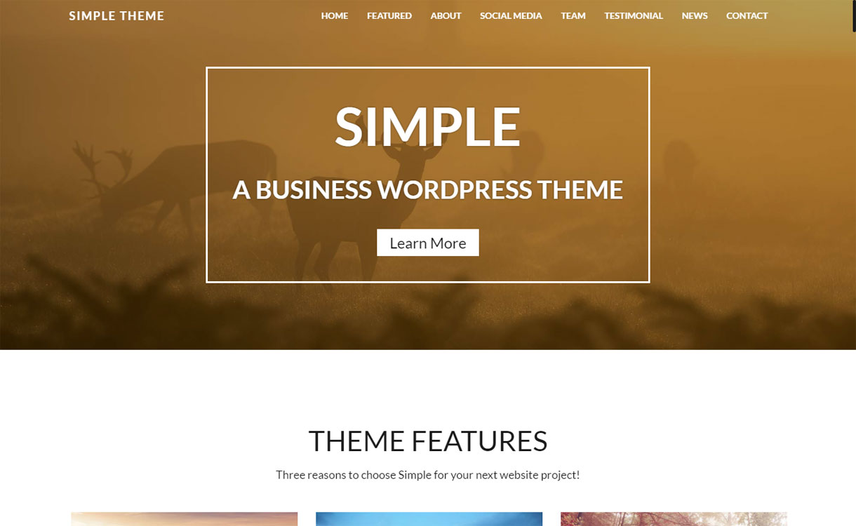 Simple Theme - Premium Business WordPress Theme