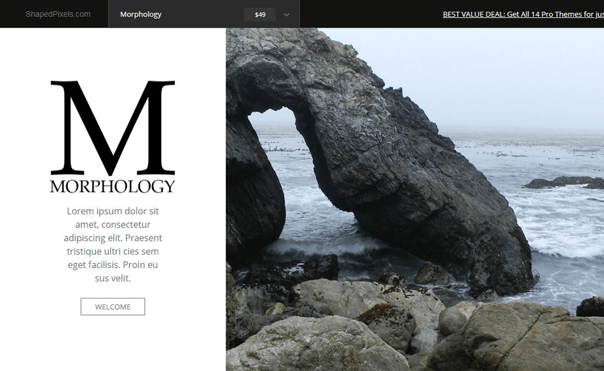 Morphology Lite-Best Free WordPress Photography Themes