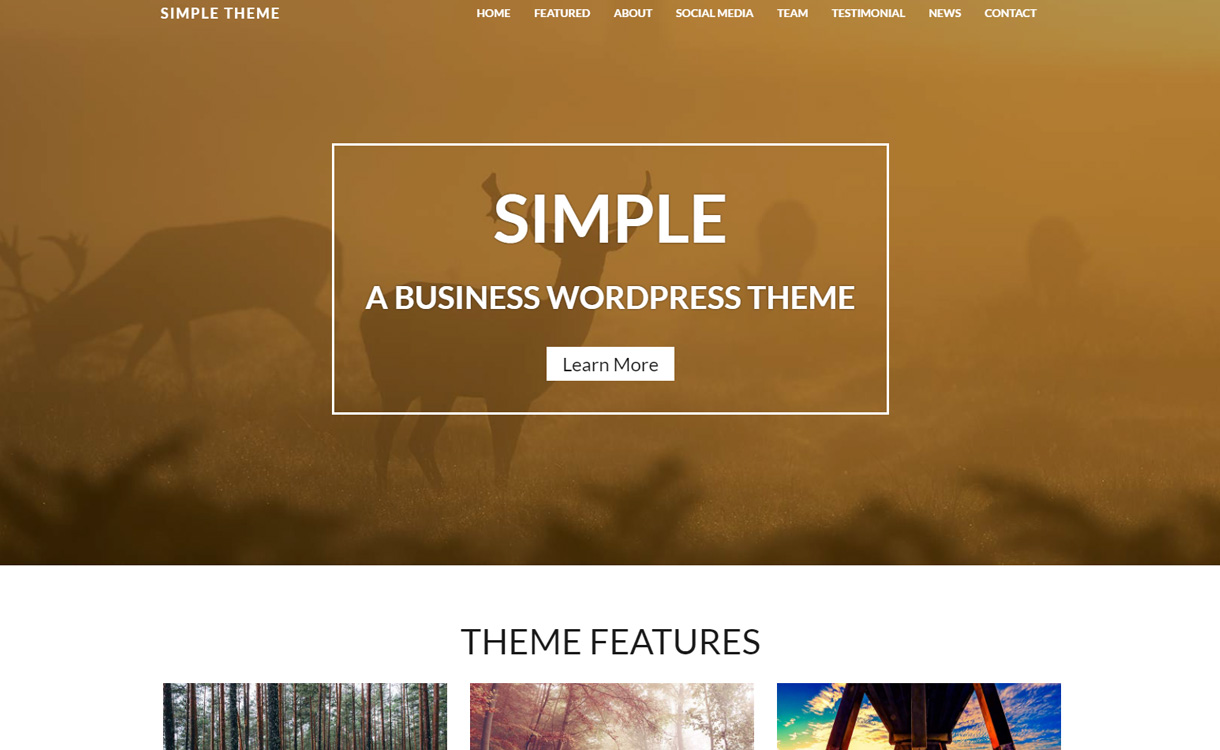 Simple - Premium WordPress Business Theme