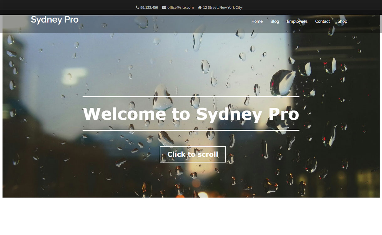 Sydney Pro - 35+ Best Premium WordPress Themes and Templates 2020[UPDATED]