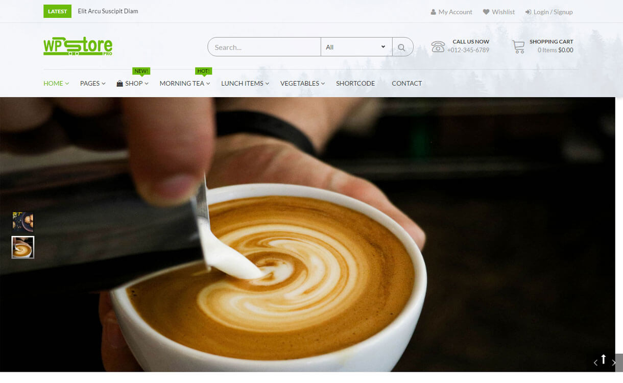 WP Store Pro - Premium WordPress eCommerce/WooCommerce Theme