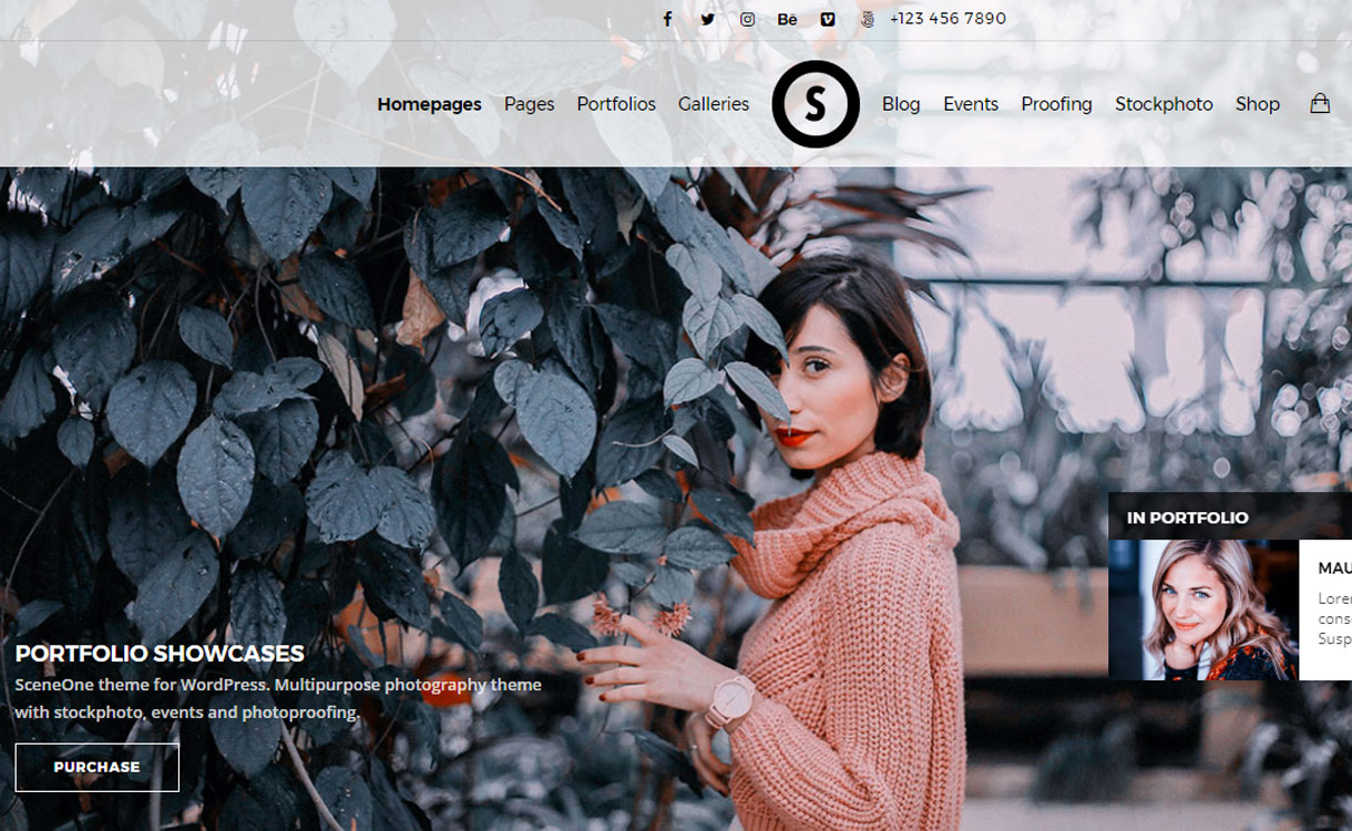 sceneone Best Premium WordPress Photography Themes 2017.jpg - 30+ Best Premium WordPress Photography Themes 2019