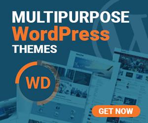 2 300 250 - AccessPress Store Pro: Perfect WooCommerce WP Theme