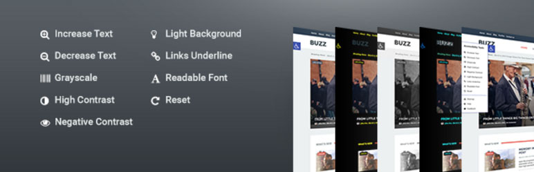 Accessibility - Responsive WordPress Plugin