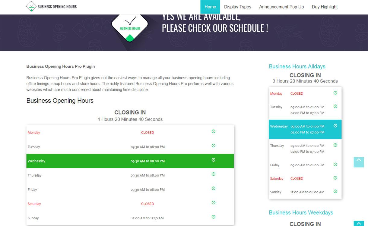 BusinessOpeningHours - Premium WordPress Plugin