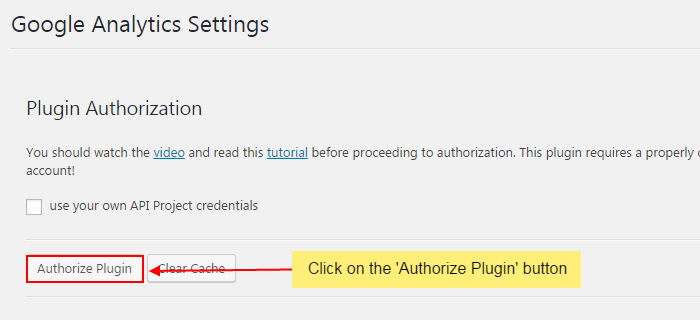 Click on authorize plugin button - How to setup Google analytics on your WordPress website