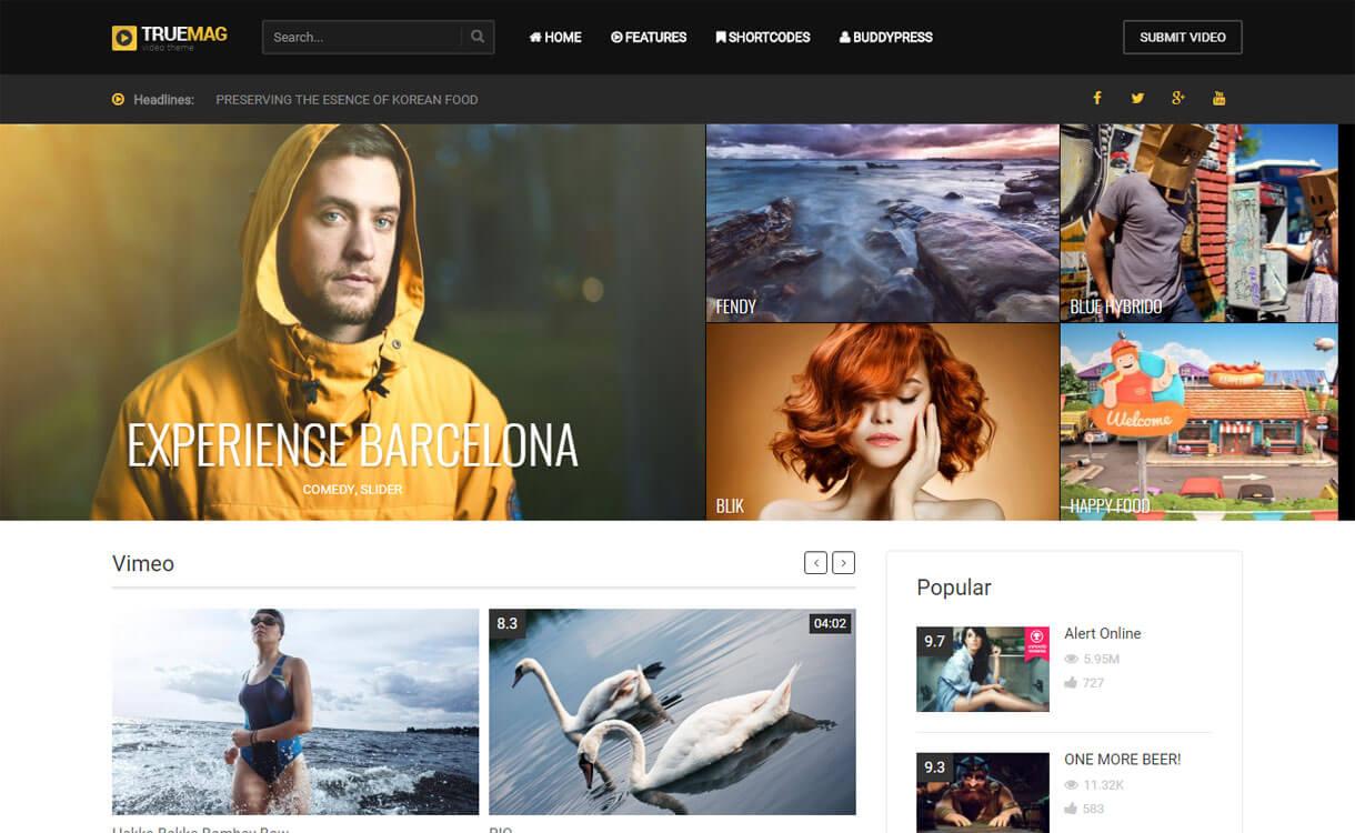 True Mag - 15+ Best Responsive WordPress Video Themes 2019