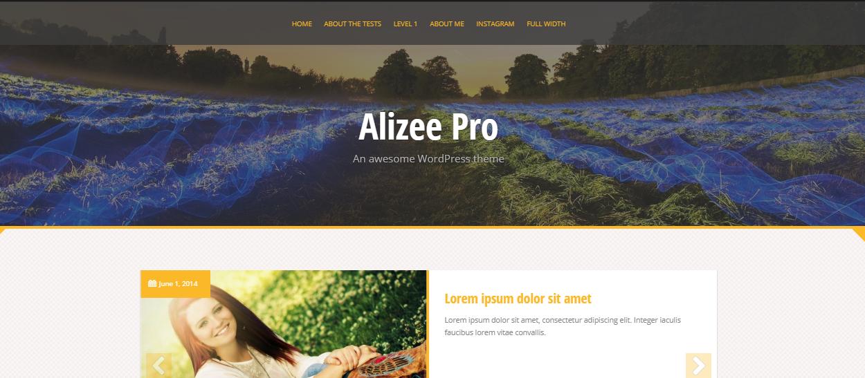 alizee pro - 30+ Best Premium WordPress Blog Themes 2019