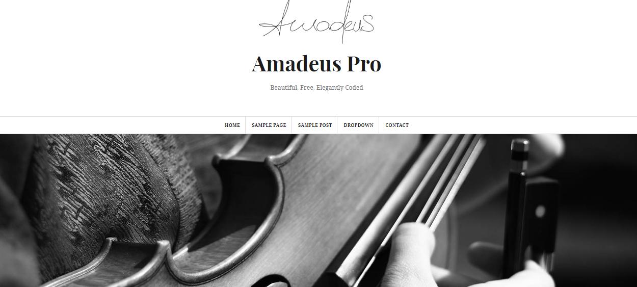 amandeus pro - 30+ Best Premium WordPress Blog Themes 2019
