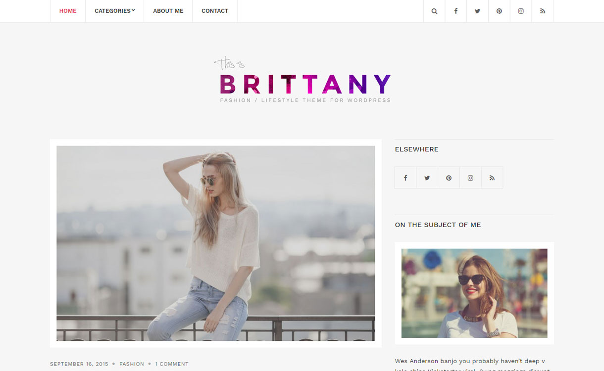 Brittany Light - Free WordPress Blogging Theme